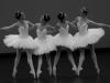 c_portes-ouvertes-danse-CNSMDP_theme-et-variations_1