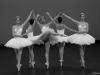 i_portes-ouvertes-danse-CNSMDP_theme-et-variations_5