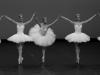 k_portes-ouvertes-danse-CNSMDP_theme-et-variations_6