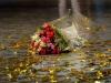 m_adieux-benjamin-pech-bouquet