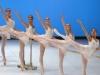 o_ecole-de-danse-de-l-opera-de-paris_demonstrations_2017_1er_division-filles-barre