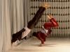 t-Dancing mid-age_men