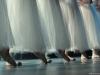 o_Giselle-Scala-de-Milan