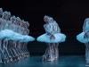 o-Le-Lac-des-Cygnes_corps-de-ballet.jpeg