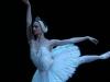 p-nomination-etoile_leonore-baulac