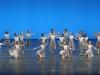 f-demonstrations-2016_danse-baroque