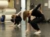 f_laac-danse-acutelle-spectacle