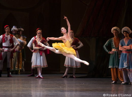 Stella Abrera in Le Corsaire. Photo: Rosalie O'Connor.