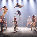 Gravity & Other Myths – Backbone ou quand l'Australie fait son cirque!