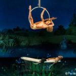 Bosch Dreams – Les 7 Doigts de la Main au Jardin des Délices