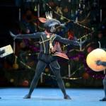 [Dossier] Spectacles des Fêtes, Casse-Noisette, Le Noël de Don Quichotte, Idées cadeaux… Noël de la Danse 2017