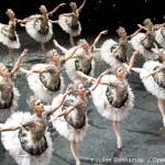 Casse-Noisette – Qui voir danser sur scène ?