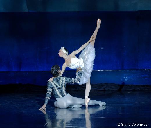 Le Lac des Cygnes - Ballet de l'Opéra de Bordeaux (photo archive)