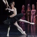 Les bonnes résolutions des héros et héroïnes de ballet