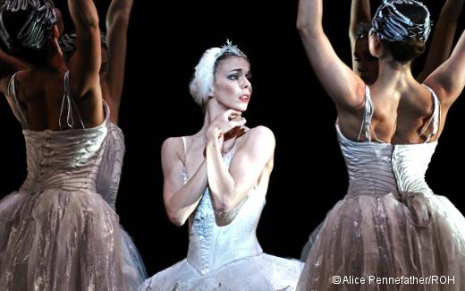 Natalia Ossipova - Le Lac des cygnes - Royal Ballet de Londres