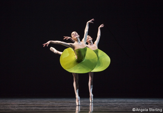 Leta Biasucci et ELisabeth Murphy-The Vertiginous Thrill of Exactitute- Willima Forsythe.