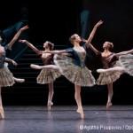 Paquita – Qui voir danser sur scène ?