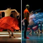 Saison 2015-2016 – Le Ballet de l'Opéra de Lyon