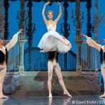 Spectacle 2015 de l'École de Danse de l'Opéra de Paris