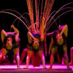 Teh Dar – Le Nouveau Cirque du Vietnam