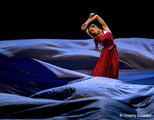 """Tristan et Isolde """"Salue pour moi le monde !"""" de Joëlle Bouvier"""