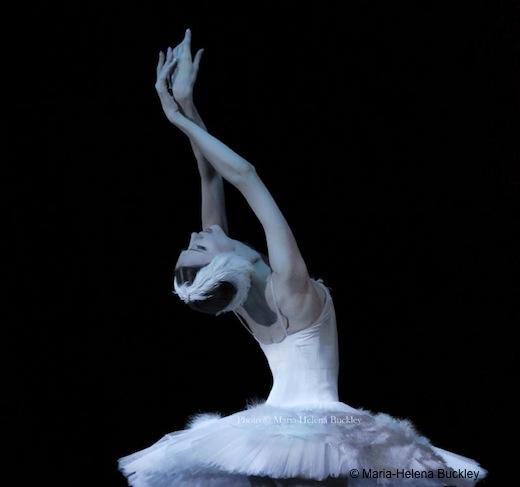 La Mort du Cygne, Svetlana Zakharova