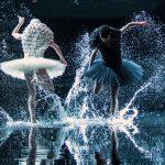 A Swan Lake d'Alexander Ekman ou comment danser avec l'eau