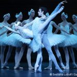 [Photos] Retour sur Le Lac des cygnes par le Ballet de l'Opéra de Paris – 7 au 31 décembre 2016