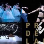Agenda Danse – Février 2020