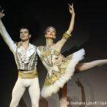 Programme de rentrée Rudolf Noureev – Ballet de l'Opéra de Paris