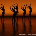 [L'école des rêves sur France 5 ] Rencontre avec Hortense et Rémi, élèves de l'école de danse de l'Opéra de Paris