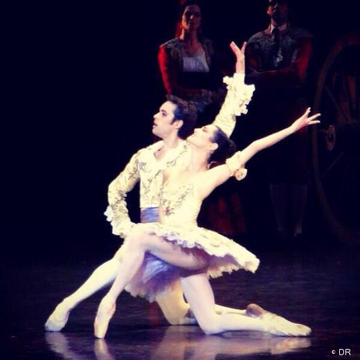 Mathias Heymann et Mathilde Froustey - Don Quichotte