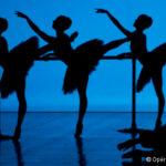 Les dix questions de la saison Danse 2021-2022