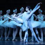 [Photos] Retour sur la saison 2016-2017 du Ballet de l'Opéra de Paris