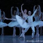 Agenda Danse en VOD – Décembre 2020