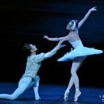 Le Lac des Cygnes par le Ballet National de Chine (Zhang Jian et Sheng Shidong)