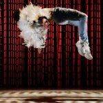 Le Temps d'Aimer la Danse 2016 – Relecture réjouissante des Forains