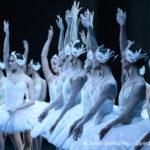 Lecture et décryptage du rapport sur la diversité à l'Opéra de Paris