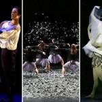 Saison 2014-2015 : le Ballet du Capitole