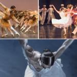 Saison 2015-2016 – Le Ballet du Capitole de Toulouse