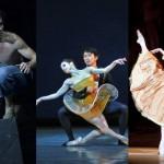 Saison 2013-2014 : la sélection danse classique