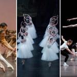 Saison 2015-2016 – La sélection Danse classique