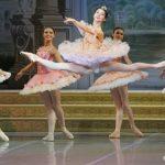 Rencontre avec Jean-Guillaume Bart pour sa Belle au bois dormant au Yacobson Ballet