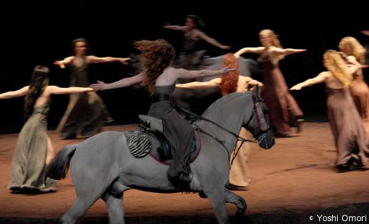 we-were-horses
